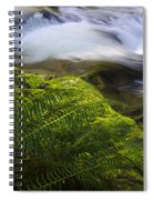 Sweet Creek Oregon 11 Spiral Notebook
