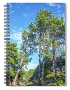 Tall Pine Trees Spiral Notebook