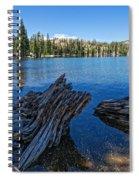 Tamarack Lake Spiral Notebook