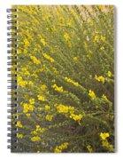 Tarweed Flowering Spiral Notebook