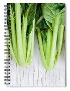 Tatsoi Spiral Notebook