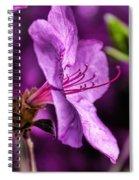 Tenderness Spiral Notebook