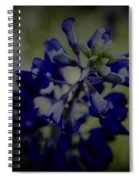 Texas Bluebonnet Spiral Notebook