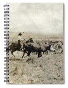 Texas: Cowboy, C1908 Spiral Notebook