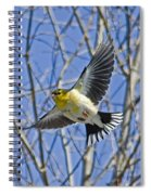 The American Goldfinch In-flight, Spiral Notebook