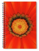 The Beauty Of Orange Spiral Notebook