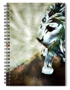 The Boy And The Lion 3 Spiral Notebook