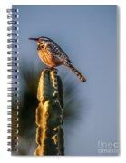 The Cactus Wren Spiral Notebook