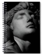 The Dying Slave Spiral Notebook