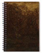 The Forest In Winter At Sunset Spiral Notebook