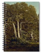 The Great Oaks Of Old Bas-breau Spiral Notebook