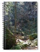 The Green Forest Spiral Notebook