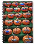 The Happy Place.. Spiral Notebook