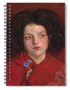 The Irish Girl Spiral Notebook