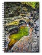The Narrows Of Watkins Glen Spiral Notebook