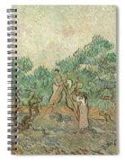 The Olive Orchard, 1889 Spiral Notebook