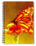 The Quality Of Dreams Spiral Notebook
