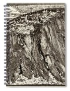 The Remains Spiral Notebook