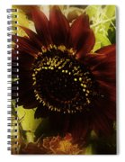 The Softness Of Autumn Spiral Notebook