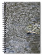 The Swimming Turtle Spiral Notebook