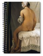 The Valpincon Bather Spiral Notebook