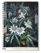 Thornton: Passion-flower Spiral Notebook