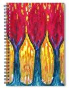 Three Matches Spiral Notebook