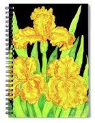 Three Yellow Irises, Painting Spiral Notebook