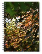 Through The Leaves Spiral Notebook