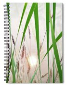 Through The Looking Grass Spiral Notebook