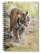 Tiger In The Woods Spiral Notebook