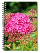 Tiny Pink Spirea Flowers Spiral Notebook