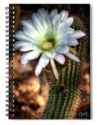 Torch Cactus - Echinopsis Candicans Spiral Notebook