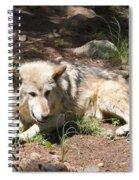 Tour Of Rocky Mountain Wildlife Foundation Spiral Notebook