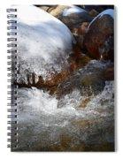 Trail To Tokopah Falls Spiral Notebook