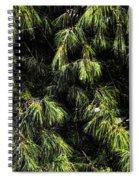 Tree 8 Spiral Notebook