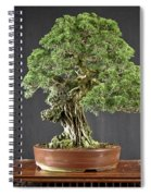 Tree Spiral Notebook
