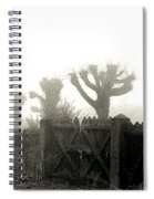 Trees In The Fog Spiral Notebook