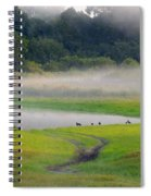 Trees In The Mist Spiral Notebook