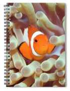 Tropical Fish Clownfish Spiral Notebook