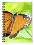 Tropical Queen Butterfly Framing Image Spiral Notebook