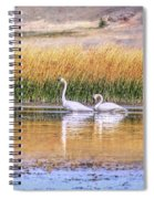 Tranquil Trumpeter Swans Spiral Notebook