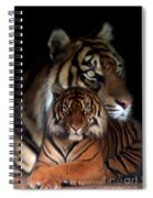 Twin Souls Spiral Notebook