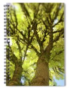 Twin Trees Spiral Notebook