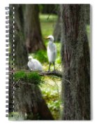Two Baby Great Egrets And Nest Spiral Notebook