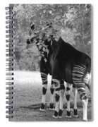 Two Stripers Spiral Notebook