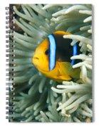 Underwater Close-up Spiral Notebook