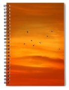 Upon A Sunset Flight Spiral Notebook