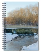 Valley Creek Waterfall In Winter  Spiral Notebook