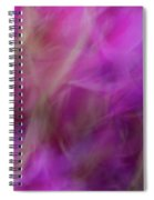 Vibrant  Spiral Notebook